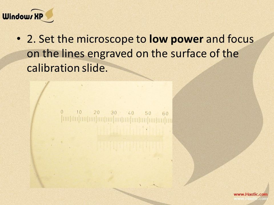 2. Set the microscope to low power and focus on the lines engraved on the surface of the calibration slide.