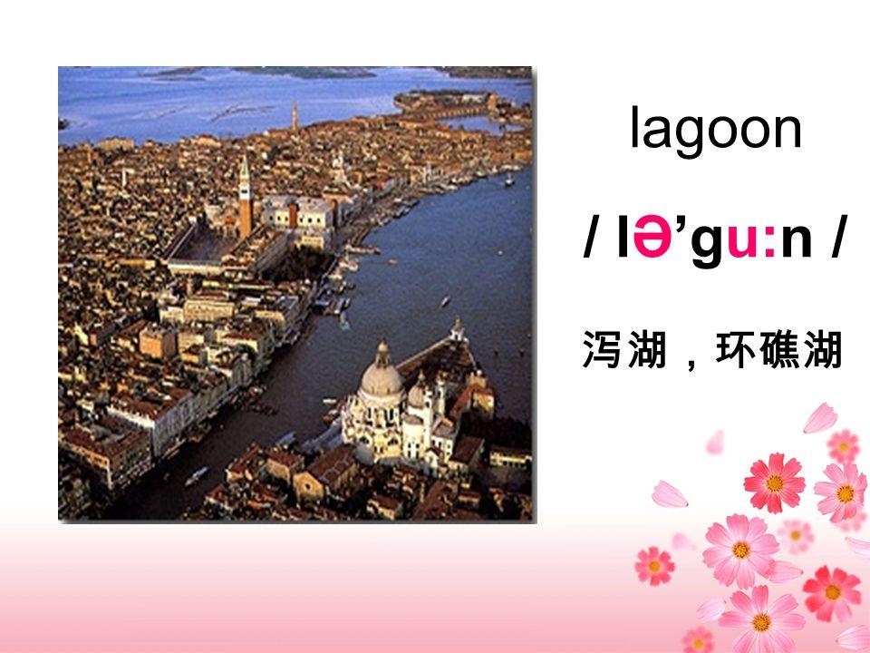 lagoon / lƏgu:n /
