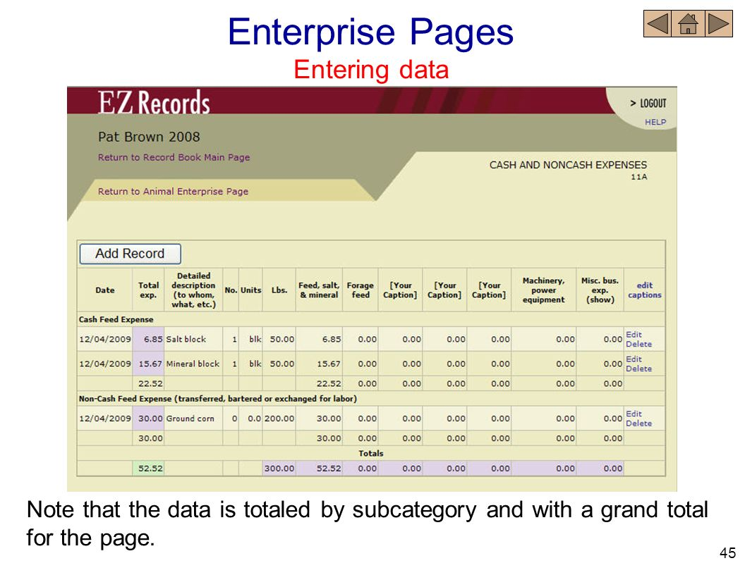 Note that the data is totaled by subcategory and with a grand total for the page. Enterprise Pages Entering data 45