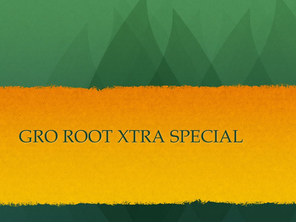 GRO ROOT XTRA SPECIAL
