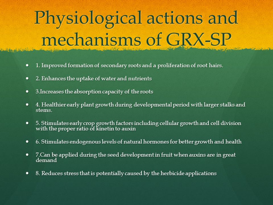 Physiological actions and mechanisms of GRX-SP 1. Improved formation of secondary roots and a proliferation of root hairs. 1. Improved formation of se