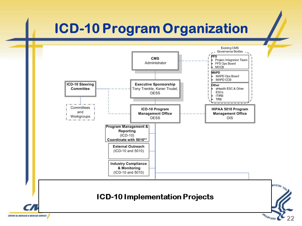 ICD-10 Program Organization 22 ICD-10 Implementation Projects