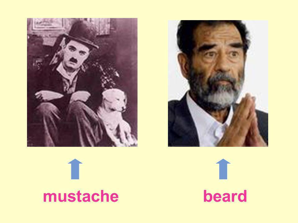 mustachebeard