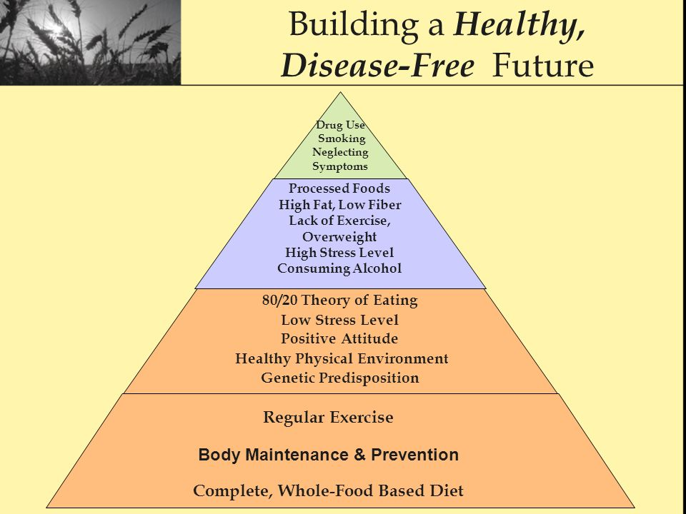 Building a Healthy, Disease-Free Future Processed Foods High Fat, Low Fiber Lack of Exercise, Overweight High Stress Level Consuming Alcohol 80/20 Theory of Eating Low Stress Level Positive Attitude Healthy Physical Environment Genetic Predisposition Regular Exercise Body Maintenance & Prevention Complete, Whole-Food Based Diet Drug Use Smoking Neglecting Symptoms