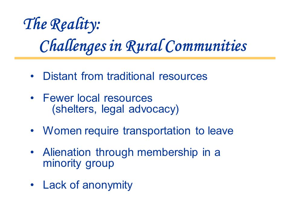 The Reality: Challenges in Rural Communities Distant from traditional resources Fewer local resources (shelters, legal advocacy) Women require transportation to leave Alienation through membership in a minority group Lack of anonymity