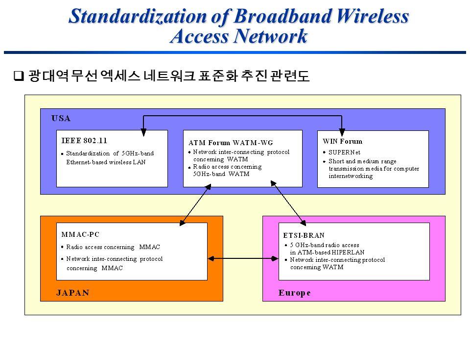 Standardization of Broadband Wireless Access Network