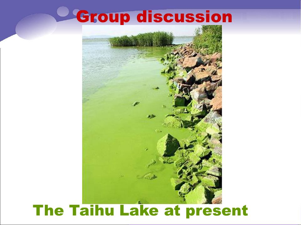 Group discussion The Taihu Lake at present