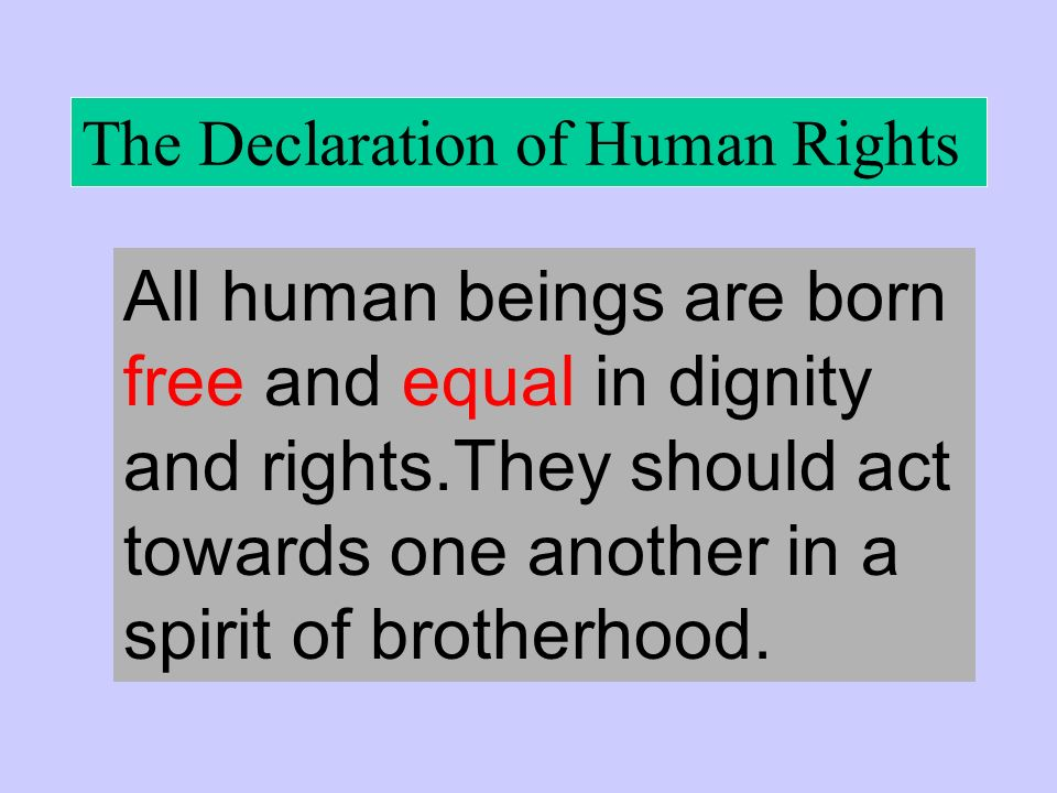 All human beings are born free and equal in dignity and rights.They should act towards one another in a spirit of brotherhood.