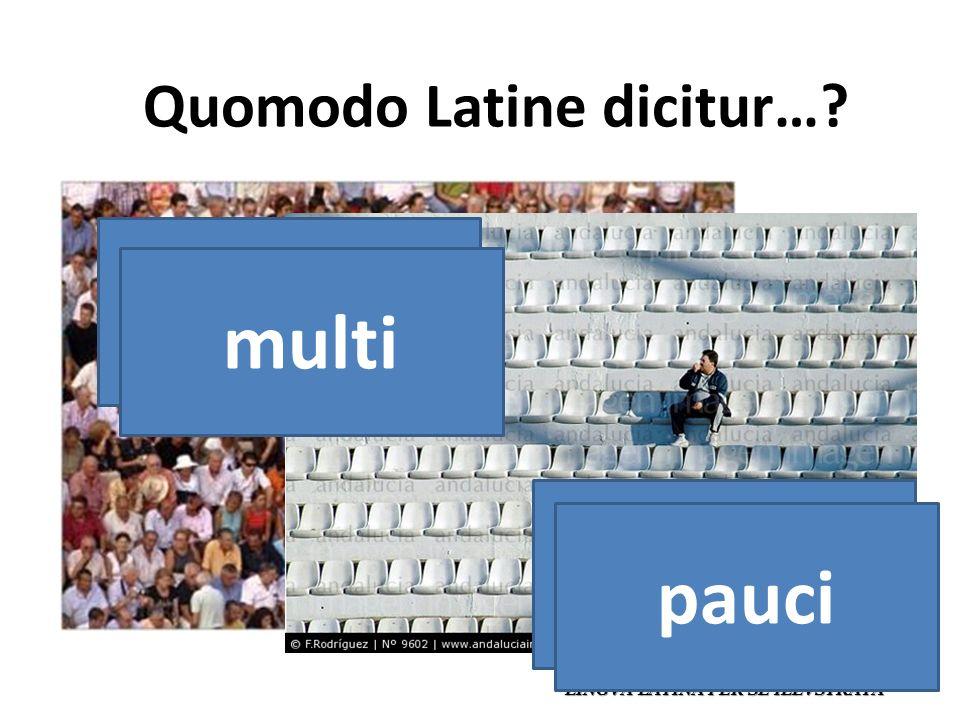 Quomodo Latine dicitur… LINGVA LATINA PER SE ILLVSTRATA muchos multi pocos pauci