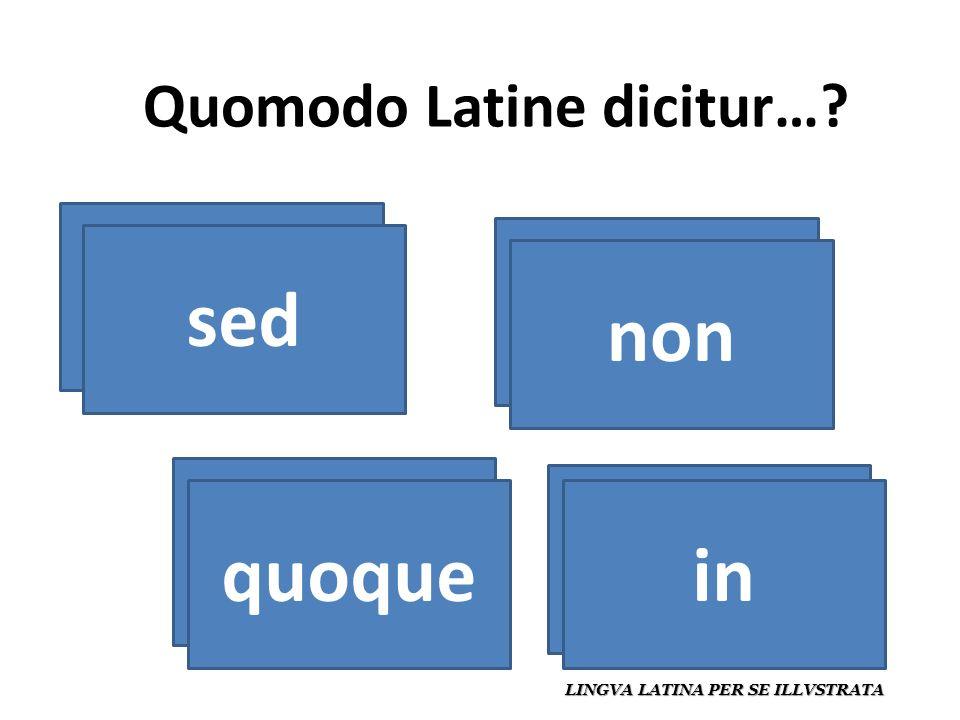 Quomodo Latine dicitur… LINGVA LATINA PER SE ILLVSTRATA pero sed no non también quoque en in
