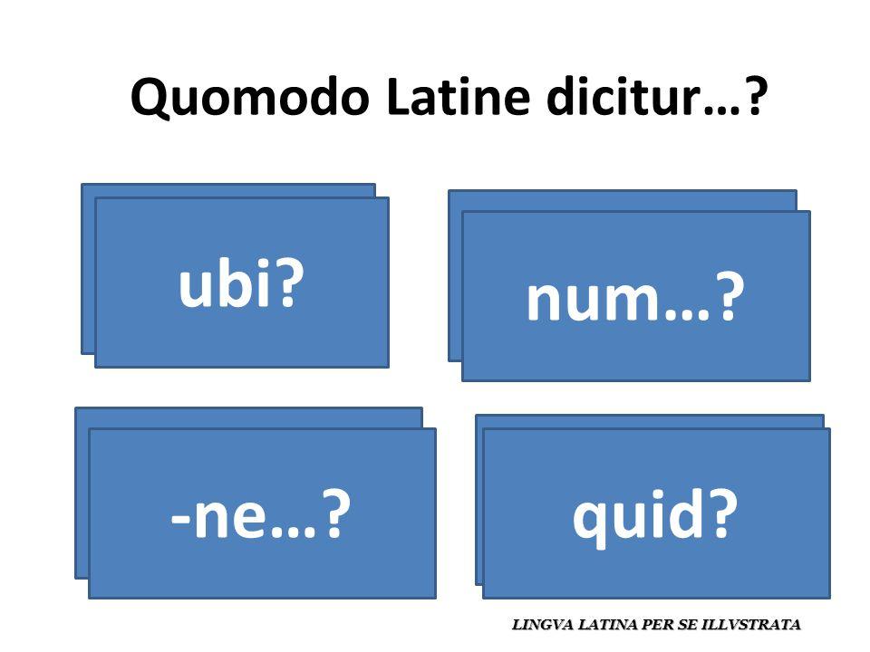Quomodo Latine dicitur…. LINGVA LATINA PER SE ILLVSTRATA ¿dónde.