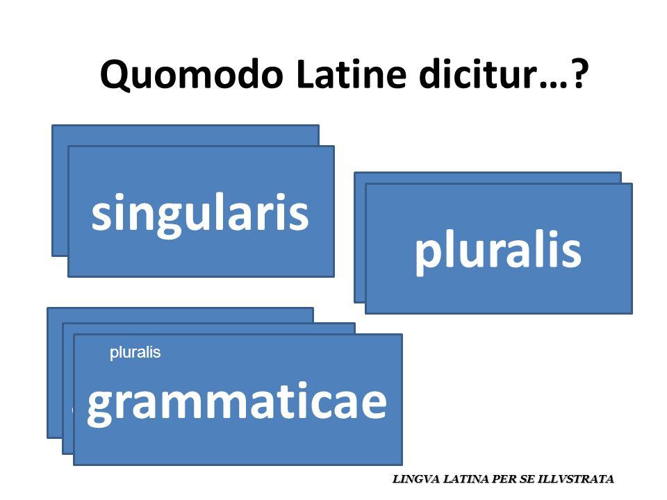 Quomodo Latine dicitur….