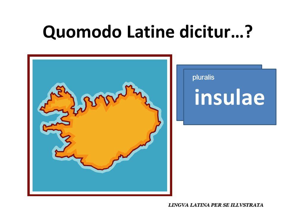 Quomodo Latine dicitur… LINGVA LATINA PER SE ILLVSTRATA insula insulae pluralis