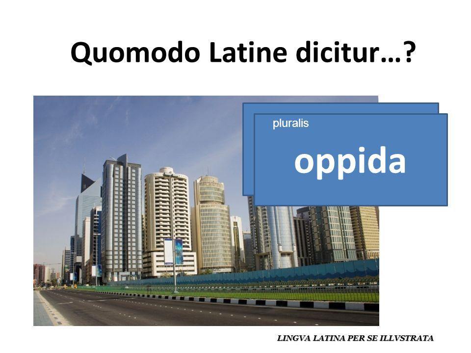 Quomodo Latine dicitur… LINGVA LATINA PER SE ILLVSTRATA oppidum oppida pluralis