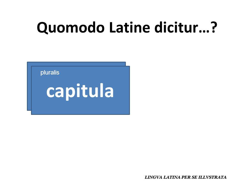 Quomodo Latine dicitur… LINGVA LATINA PER SE ILLVSTRATA capitulum capitula pluralis