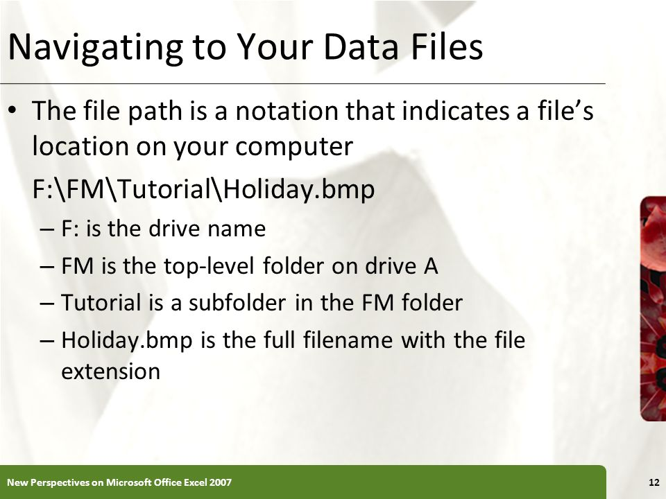 XP Navigating to Your Data Files The file path is a notation that indicates a files location on your computer F:\FM\Tutorial\Holiday.bmp – F: is the d