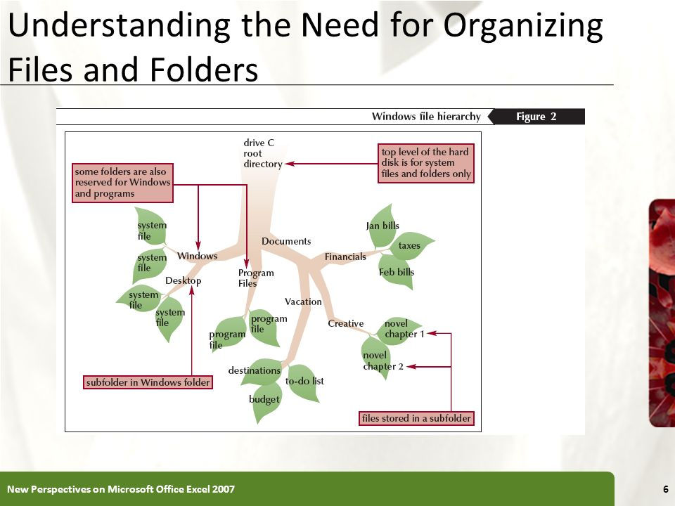 XP Developing Strategies for Organizing Files and Folders Type of disk you use to store files determines how you organize those files Storing files on removable media allows you to use simpler organization The larger the medium, the more levels of folders you should use Documents folder You should have a backup, or duplicate copy, of important files 7New Perspectives on Microsoft Office Excel 2007