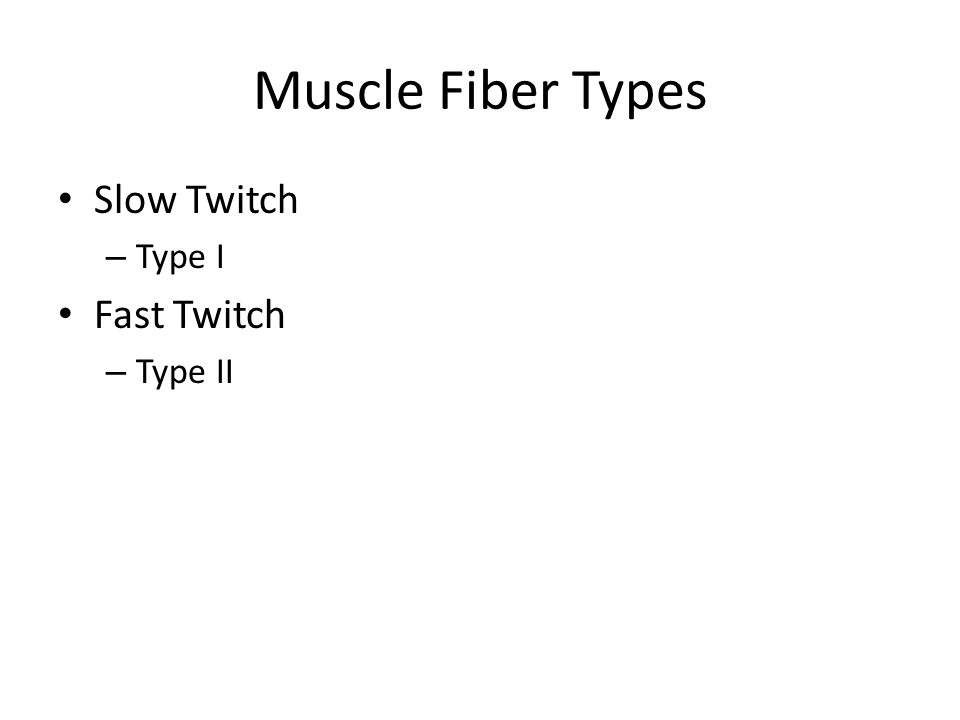 Muscle Fiber Types Slow Twitch – Type I Fast Twitch – Type II