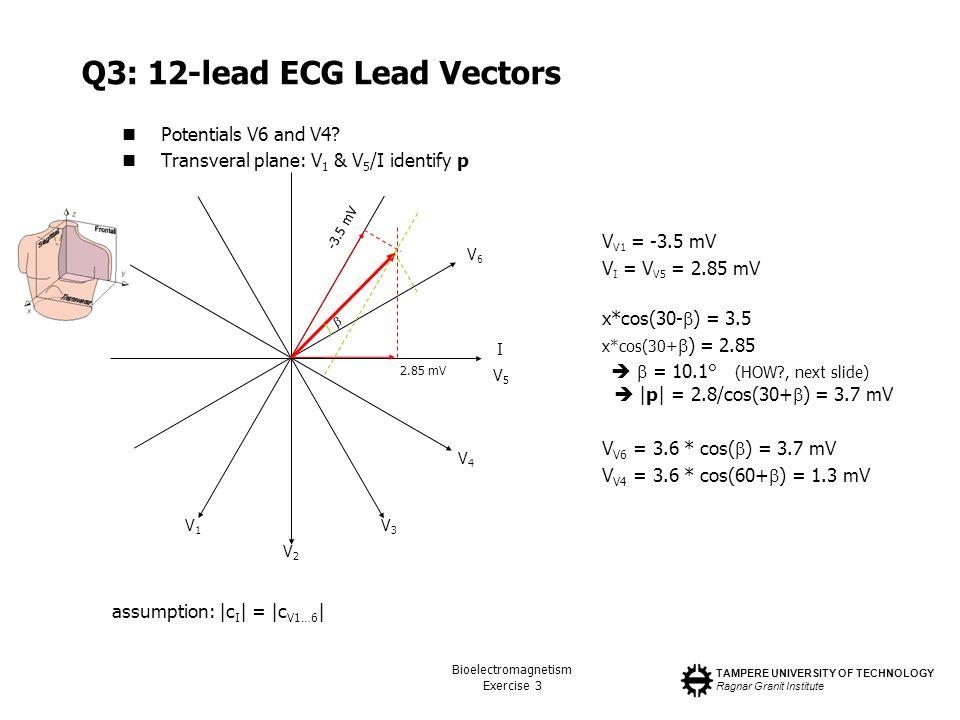 TAMPERE UNIVERSITY OF TECHNOLOGY Ragnar Granit Institute Bioelectromagnetism Exercise 3 Q3: 12-lead ECG Lead Vectors Potentials V6 and V4? Transveral