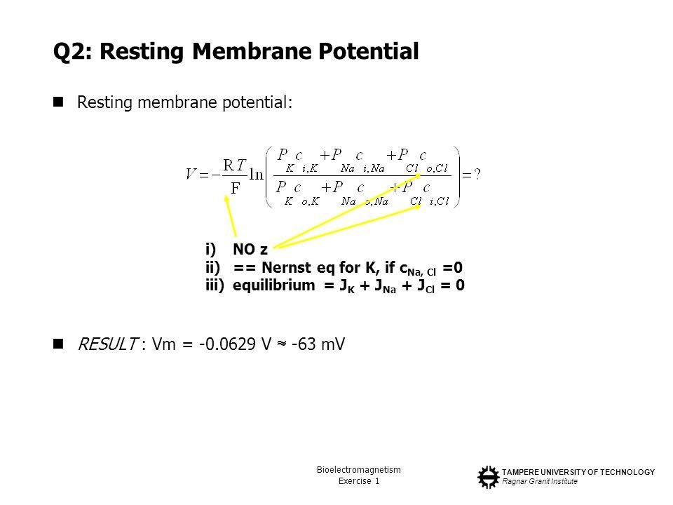 TAMPERE UNIVERSITY OF TECHNOLOGY Ragnar Granit Institute Bioelectromagnetism Exercise 1 Q2: Resting Membrane Potential Resting membrane potential: RES