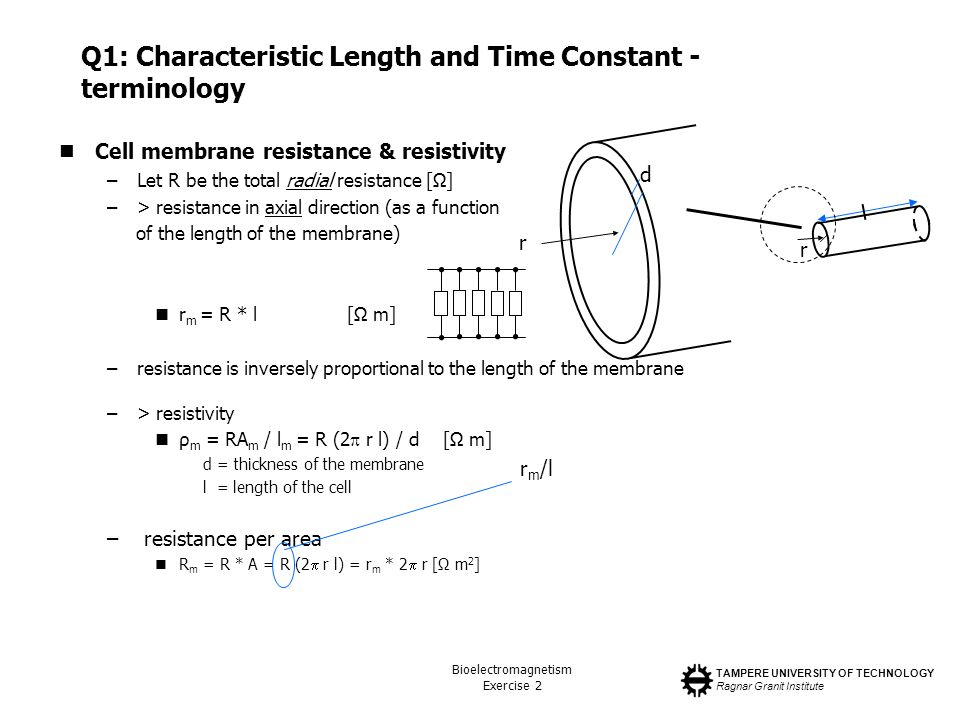 TAMPERE UNIVERSITY OF TECHNOLOGY Ragnar Granit Institute Bioelectromagnetism Exercise 2 Q1: Characteristic Length and Time Constant - terminology Cell membrane resistance & resistivity –Let R be the total radial resistance [Ω] –> resistance in axial direction (as a function of the length of the membrane) r m = R * l[Ω m] –resistance is inversely proportional to the length of the membrane –> resistivity ρ m = RA m / l m = R (2 r l) / d[Ω m] d = thickness of the membrane l = length of the cell – resistance per area R m = R * A = R (2 r l) = r m * 2 r [Ω m 2 ] l r r m /l r d