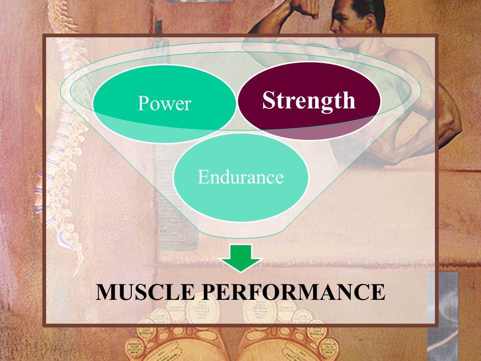 MUSCLE PERFORMANCE Endurance Power Strength