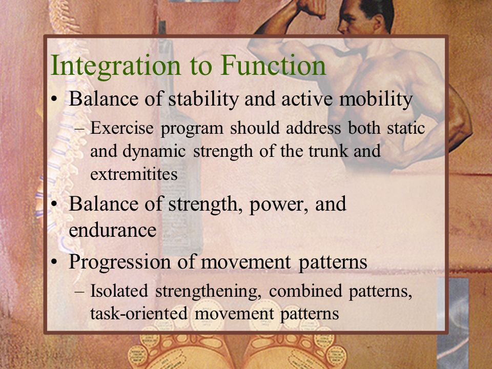 Integration to Function Balance of stability and active mobility –Exercise program should address both static and dynamic strength of the trunk and ex