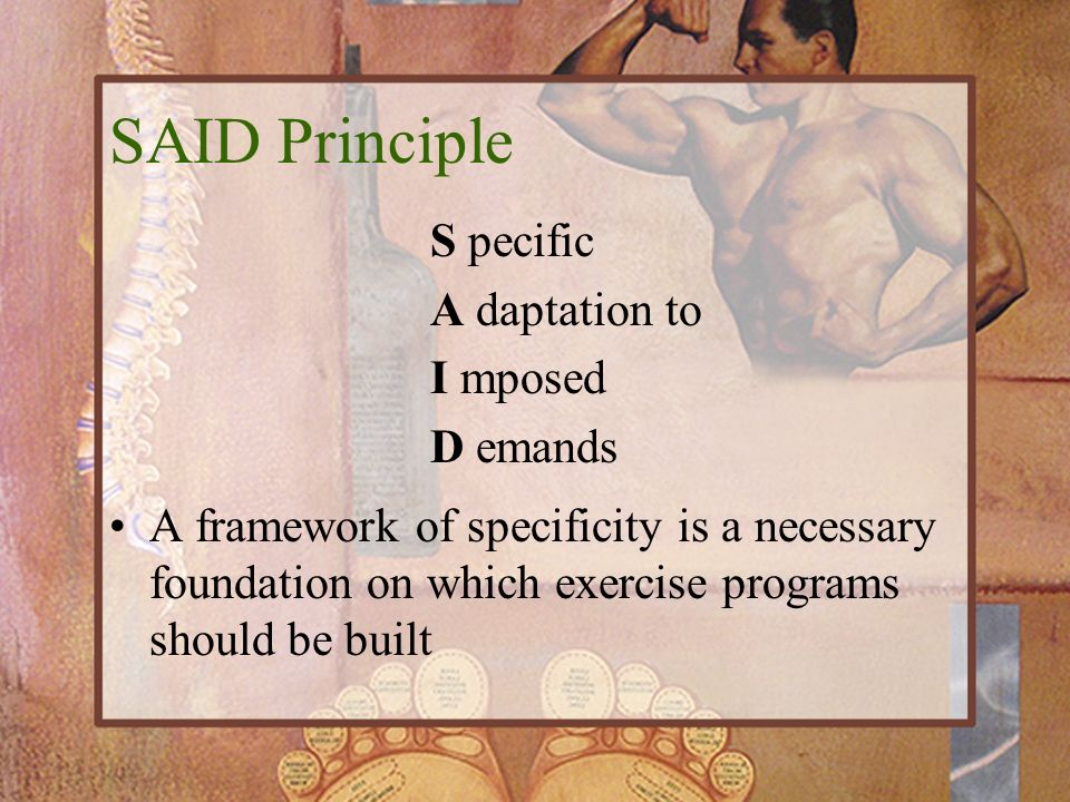 SAID Principle S pecific A daptation to I mposed D emands A framework of specificity is a necessary foundation on which exercise programs should be bu