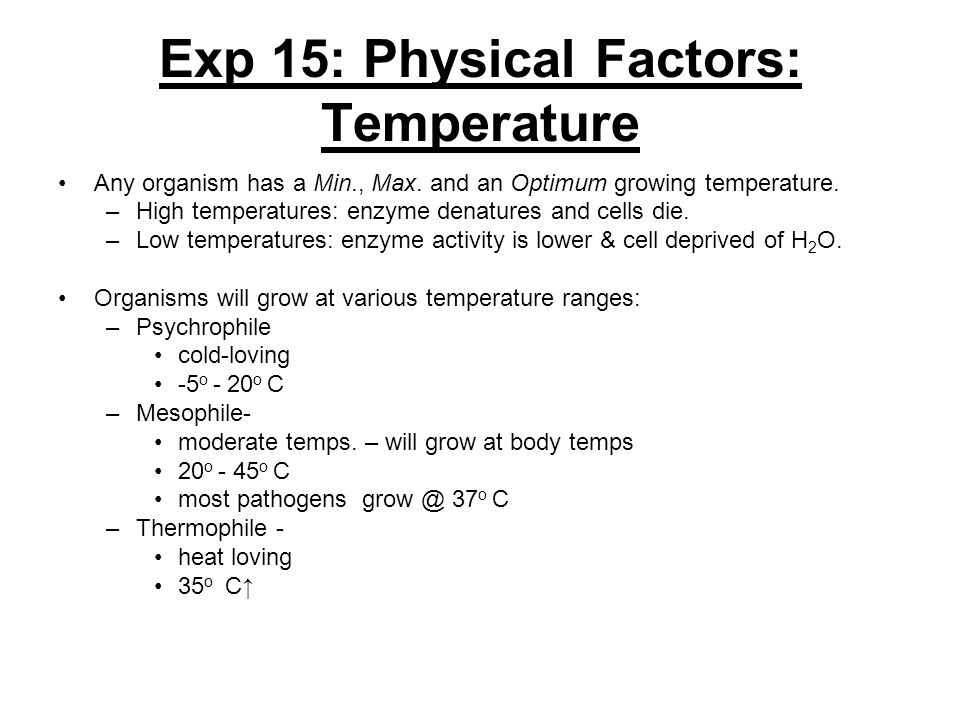 Exp 15: Physical Factors: Temperature Any organism has a Min., Max. and an Optimum growing temperature. –High temperatures: enzyme denatures and cells