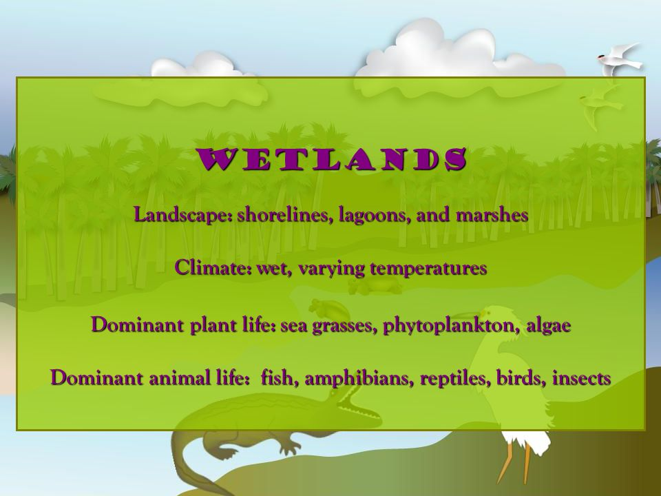 wetlands Landscape: shorelines, lagoons, and marshes Climate: wet, varying temperatures Dominant plant life: sea grasses, phytoplankton, algae Dominan