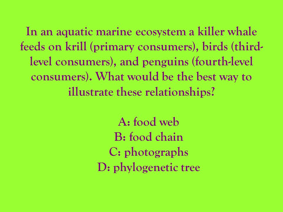 In an aquatic marine ecosystem a killer whale feeds on krill (primary consumers), birds (third- level consumers), and penguins (fourth-level consumers