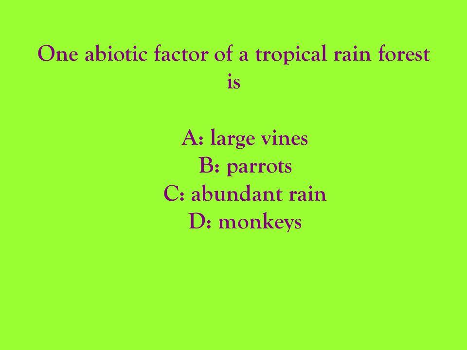 One abiotic factor of a tropical rain forest is A: large vines B: parrots C: abundant rain D: monkeys