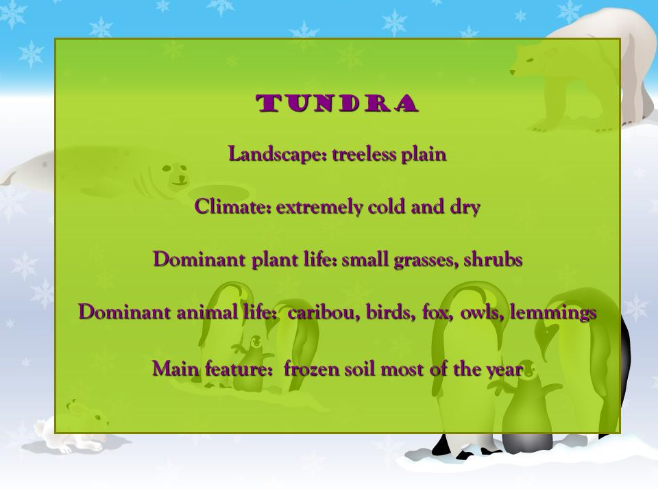 TUNDRA Landscape: treeless plain Climate: extremely cold and dry Dominant plant life: small grasses, shrubs Dominant animal life: caribou, birds, fox,