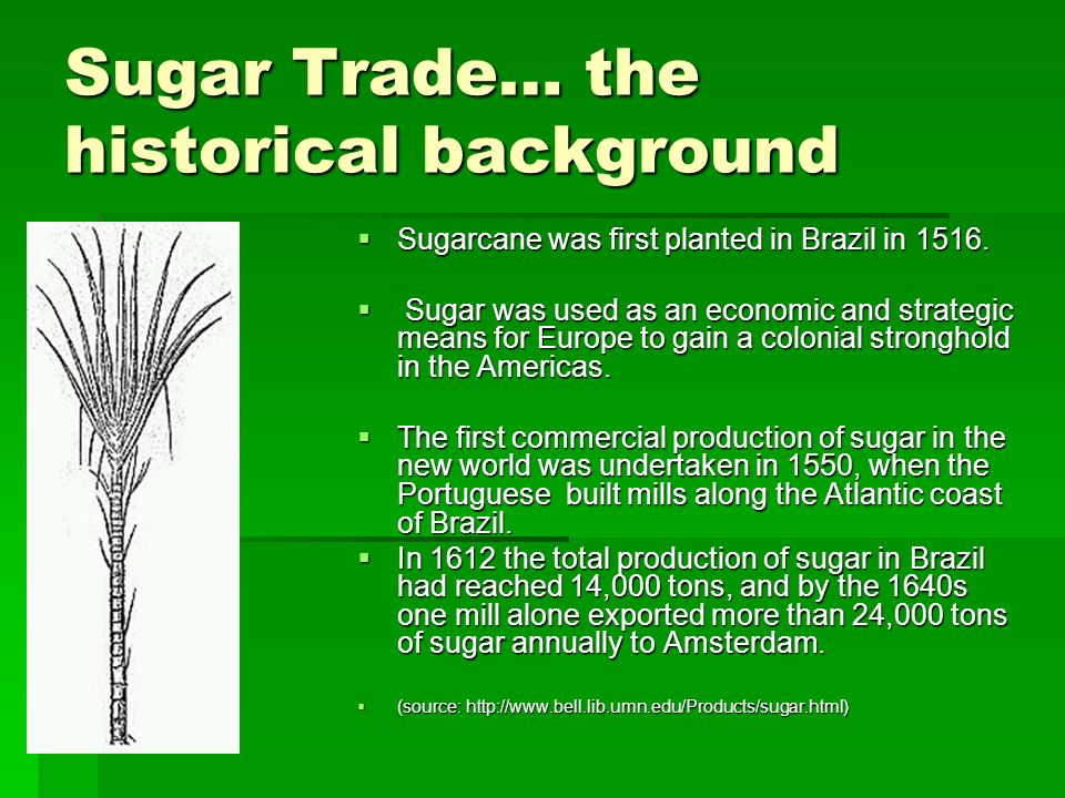 Sugar Trade… the historical background Sugarcane was first planted in Brazil in 1516. Sugarcane was first planted in Brazil in 1516. Sugar was used as