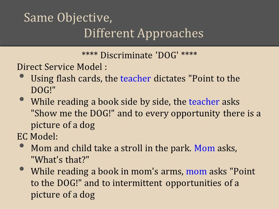 Same Objective, Different Approaches **** Discriminate 'DOG' **** Direct Service Model : Using flash cards, the teacher dictates