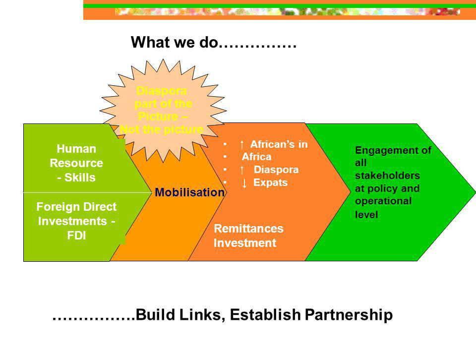 What we do…………… Remittances Investment Mobilisation Diaspora part of the Picture – Not the picture Human Resource - Skills Foreign Direct Investments - FDI Africans in Africa Diaspora Expats Engagement of all stakeholders at policy and operational level …………….Build Links, Establish Partnership
