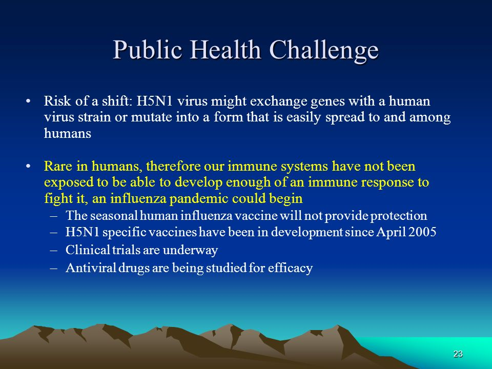 23 Public Health Challenge Risk of a shift: H5N1 virus might exchange genes with a human virus strain or mutate into a form that is easily spread to a
