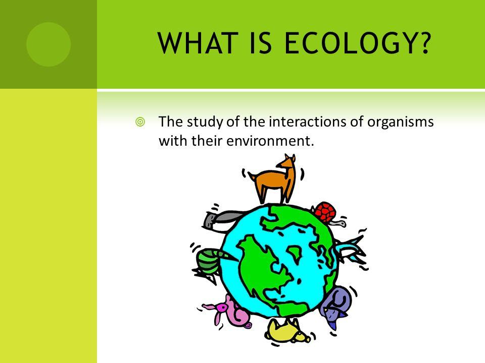 Habitat Disruption Biodiversity and Conservation Algal Blooms (Eutrophication)- large population of algae.