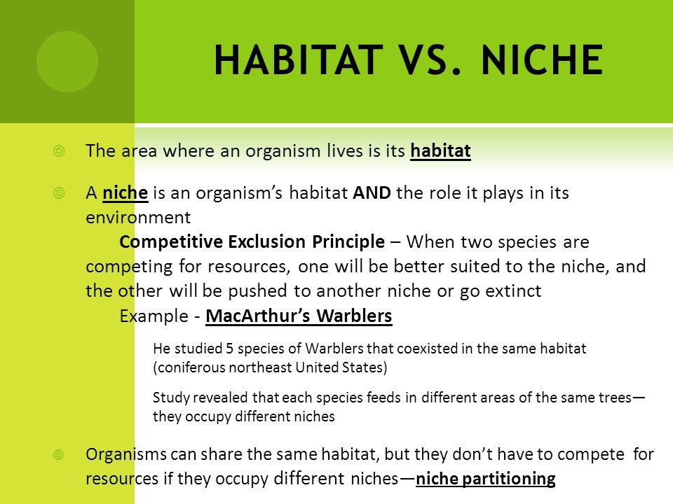 HABITAT VS. NICHE The area where an organism lives is its habitat A niche is an organisms habitat AND the role it plays in its environment Competitive