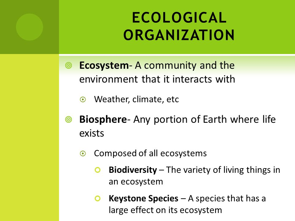 ECOLOGICAL ORGANIZATION Ecosystem- A community and the environment that it interacts with Weather, climate, etc Biosphere- Any portion of Earth where
