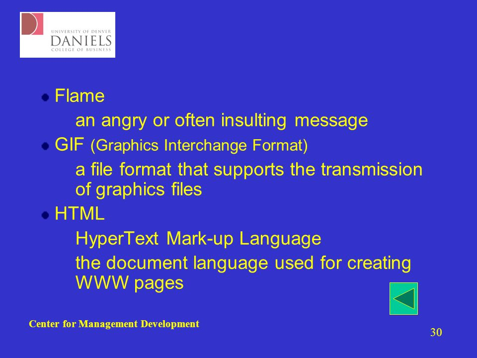 Center for Management Development 30 Flame –an angry or often insulting message GIF (Graphics Interchange Format) –a file format that supports the transmission of graphics files HTML –HyperText Mark-up Language –the document language used for creating WWW pages