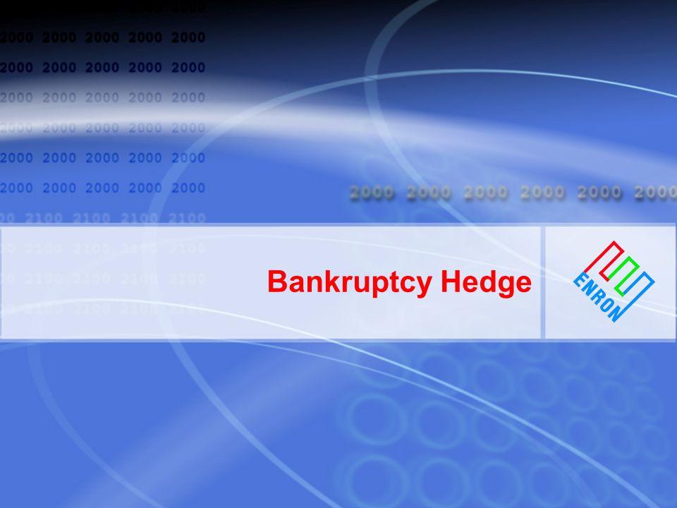 Bankruptcy Hedge