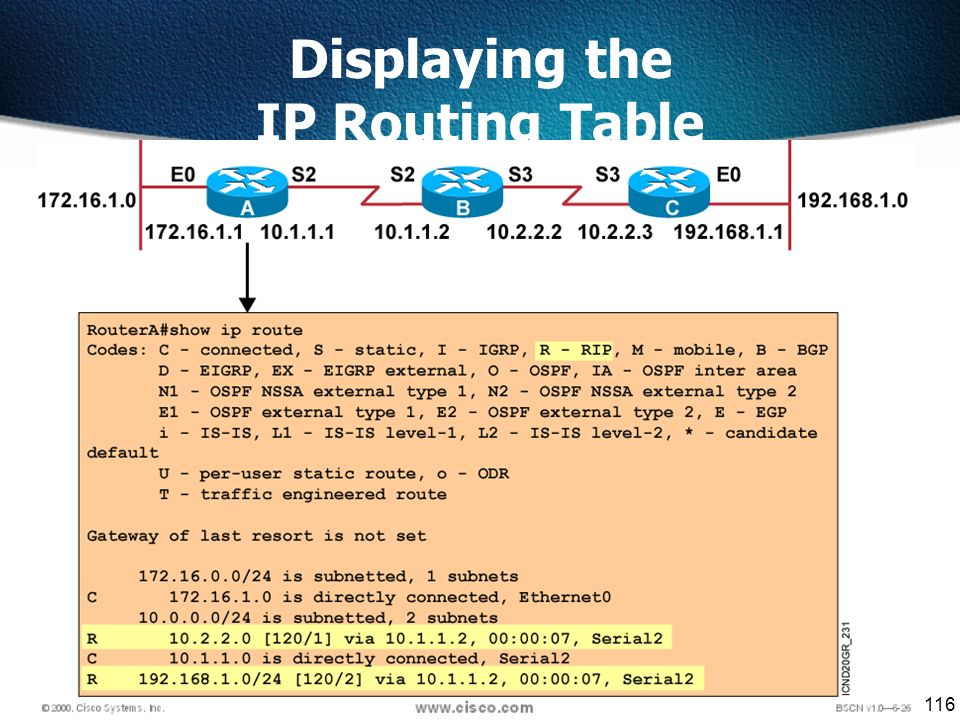 116 Displaying the IP Routing Table