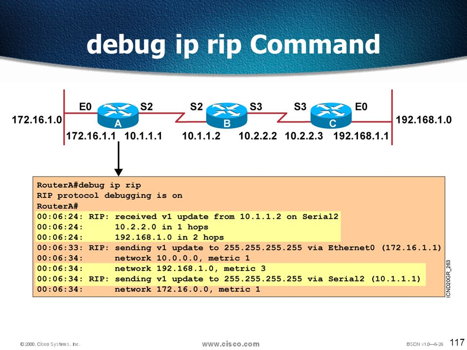 117 debug ip rip Command