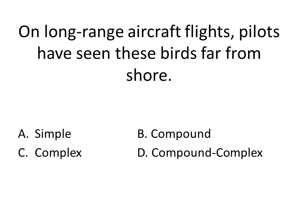 On long-range aircraft flights, pilots have seen these birds far from shore.