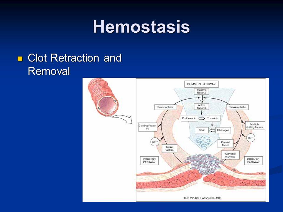 Hemostasis Clot Retraction and Removal Clot Retraction and Removal