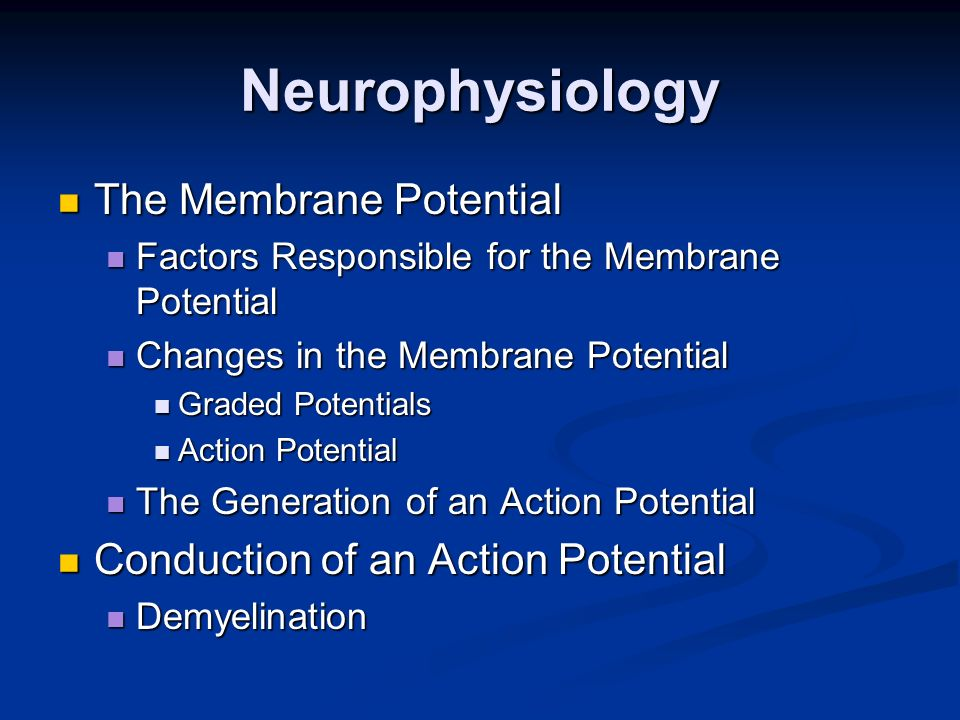 Neurophysiology The Membrane Potential The Membrane Potential Factors Responsible for the Membrane Potential Factors Responsible for the Membrane Pote
