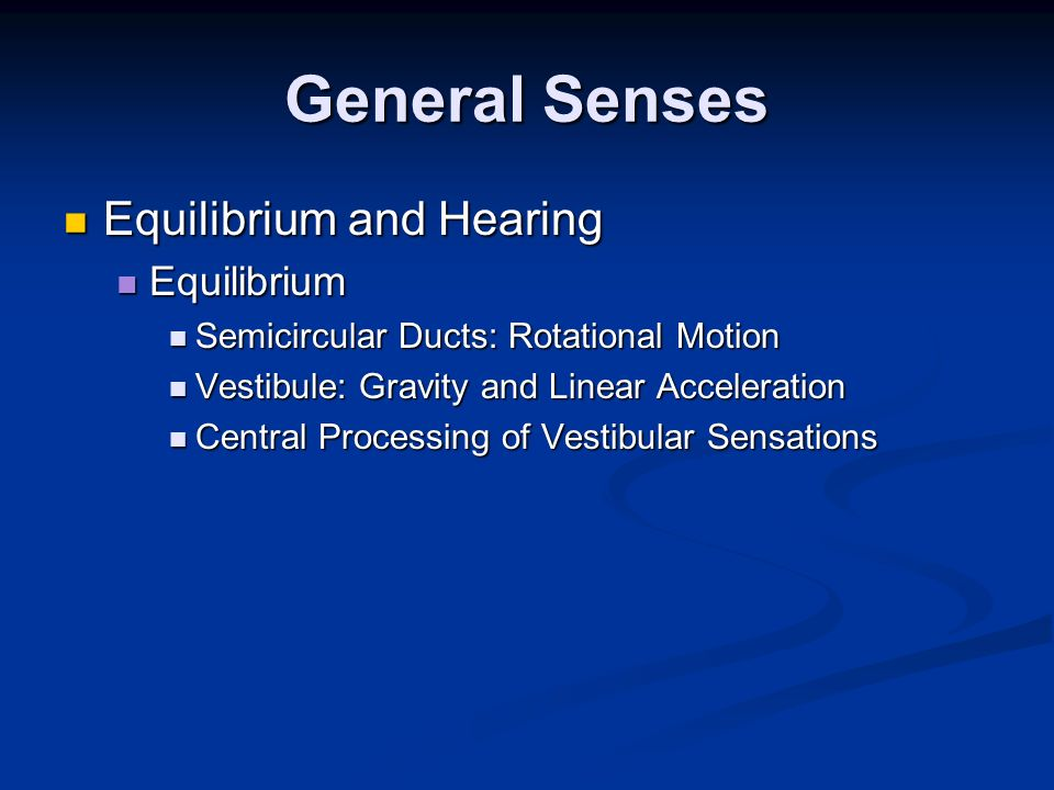 General Senses Equilibrium and Hearing Equilibrium and Hearing Equilibrium Equilibrium Semicircular Ducts: Rotational Motion Semicircular Ducts: Rotat