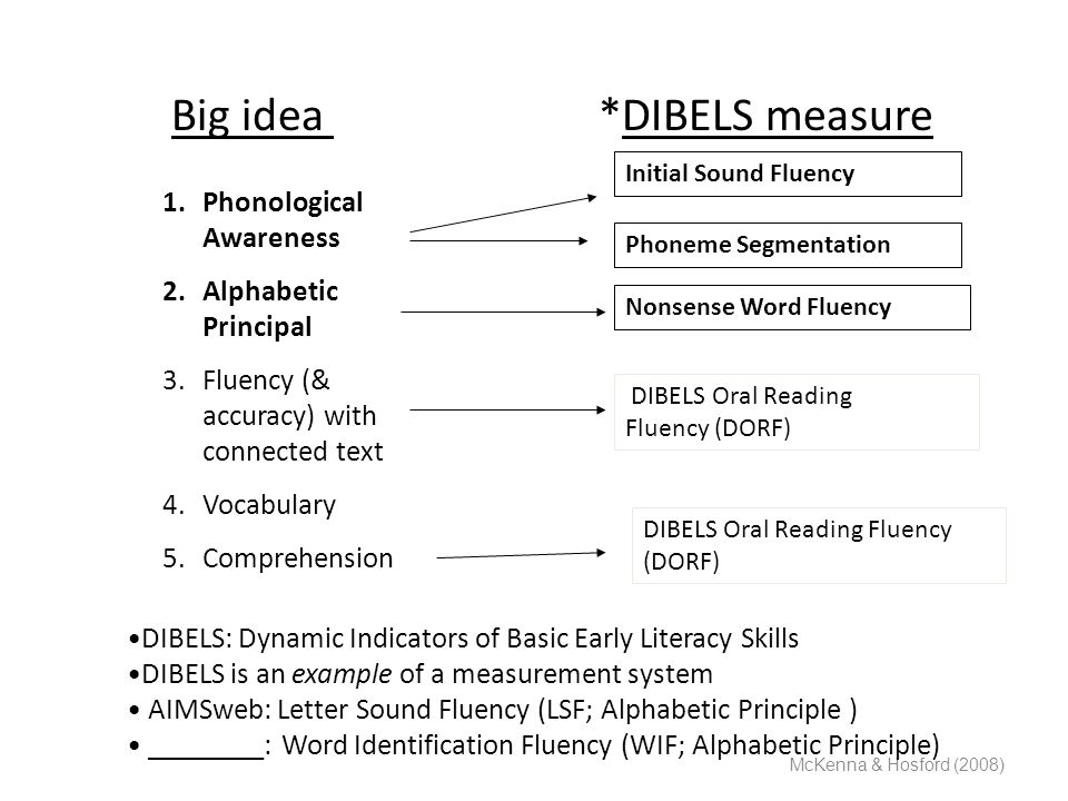 Big idea *DIBELS measure McKenna & Hosford (2008) 1.Phonological Awareness 2.Alphabetic Principal 3.Fluency (& accuracy) with connected text 4.Vocabul