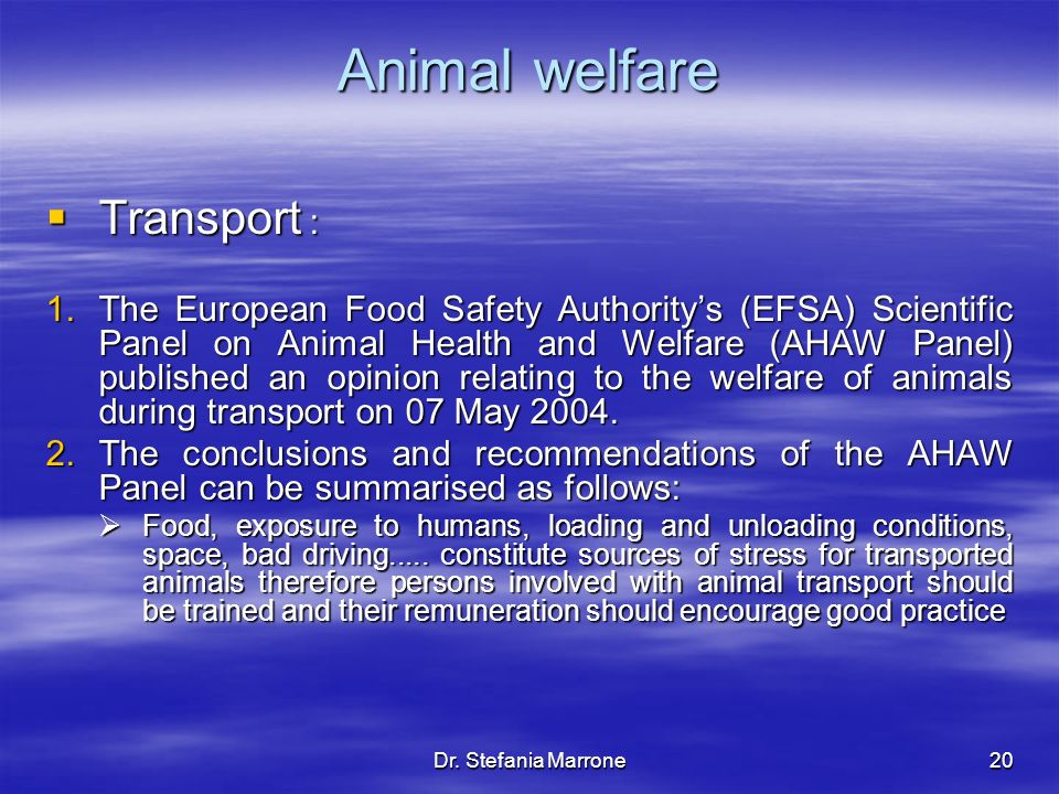 Dr. Stefania Marrone20 Animal welfare Transport : Transport : 1.The European Food Safety Authoritys (EFSA) Scientific Panel on Animal Health and Welfa